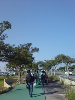 宮古島に…あいや、いやさっさっ