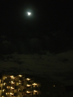 お月様がキレイですなぁ( ´ ▽ ` )ノ