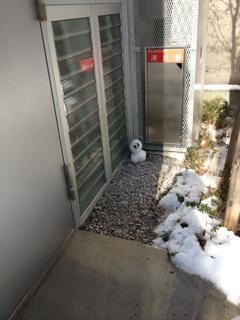 雪だるまは、太陽光、すなわち、波紋エネルギーが弱点なのダッ!!