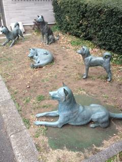謎の犬たちの銅像、とんでもないエライお方が絡んでおりました(((( ;゚д゚)))アワワワワ